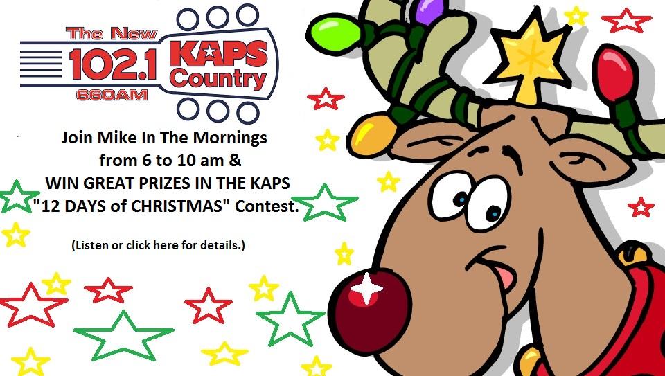 12 Days of Christmas Contest